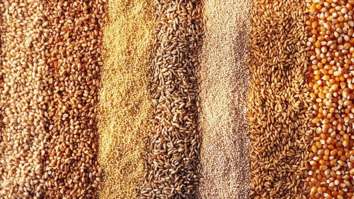 beans-grains-peas.jpg
